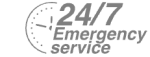 24/7 Emergency Service Pest Control in Tottenham, N17. Call Now! 020 8166 9746
